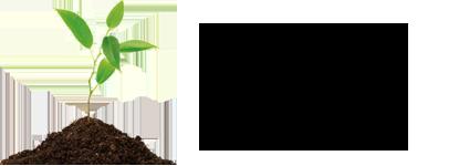logo S´Om