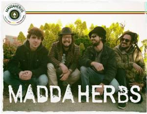 Maddaherbs madda herbs
